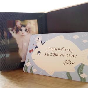 お魚と猫のメッセージカード