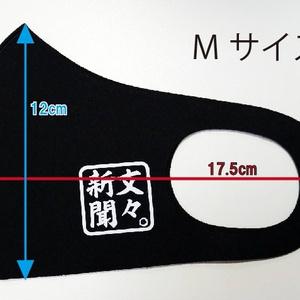 """オリジナル立体マスク""""Re""""【ナズーリン】"""