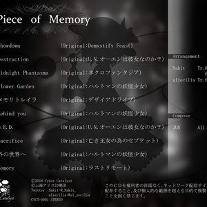 Piece of Memory