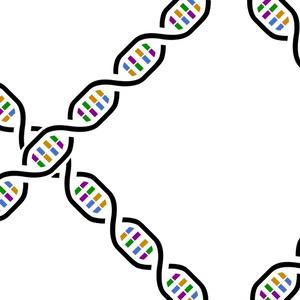 DNAペンケース