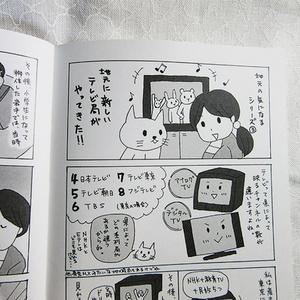 冊子「ヒコウキBOOK」コミックエッセイ