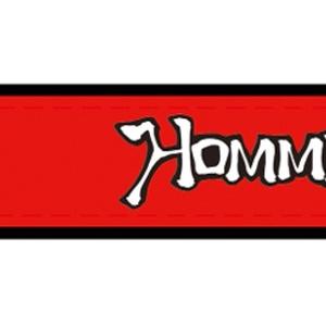 巻けるサイリウム Hommarjuリストバンド