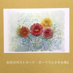 ガーベラとかすみ草2:お花のポストカード2枚セット