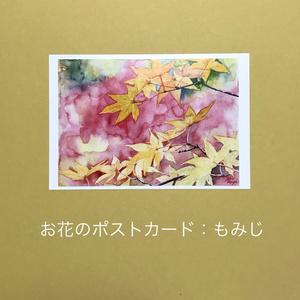もみじ:お花のポストカード2枚セット