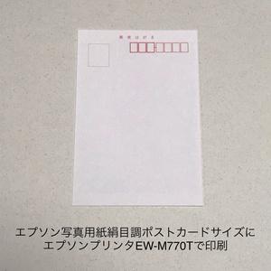 睡蓮:お花のポストカード同柄2枚セット