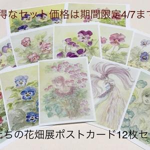 【期間限定特別価格~4/7】妖精たちの花畑展ポストカード各種