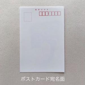 桜のポストカード各種