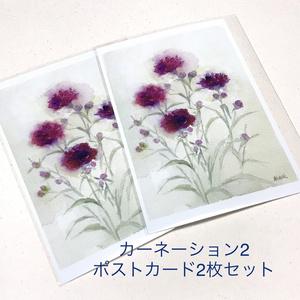 カーネーションポストカード各種