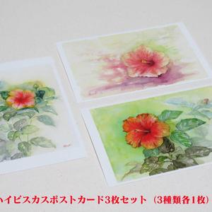 ハイビスカスポストカード3枚セット(3種類各1枚)夢で会えたら 常夏の記憶 夢のかけら