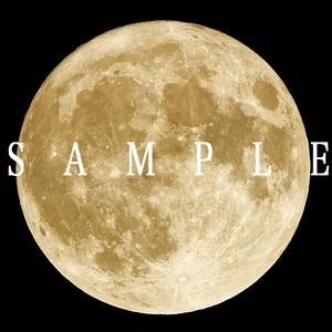 満月(スーパームーン)の写真 6枚