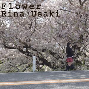 3rdCD wing/flower