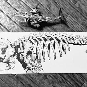 ポストカードセット「鯨の墓」