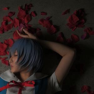 綾波レイ/新世紀エヴァンゲリヲン【Blue.】