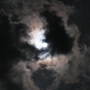 月影-着信-