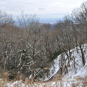 雪原、出でて春