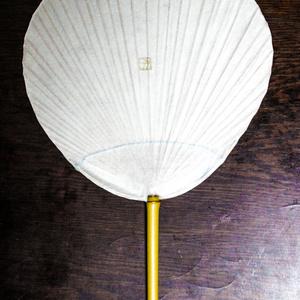 絵付け団扇(たぬき)
