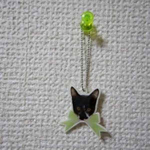 ねこリボンキーホルダー(コアラ)