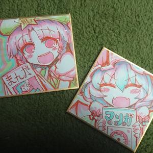 『レミリア美鈴』姫色紙二枚セット