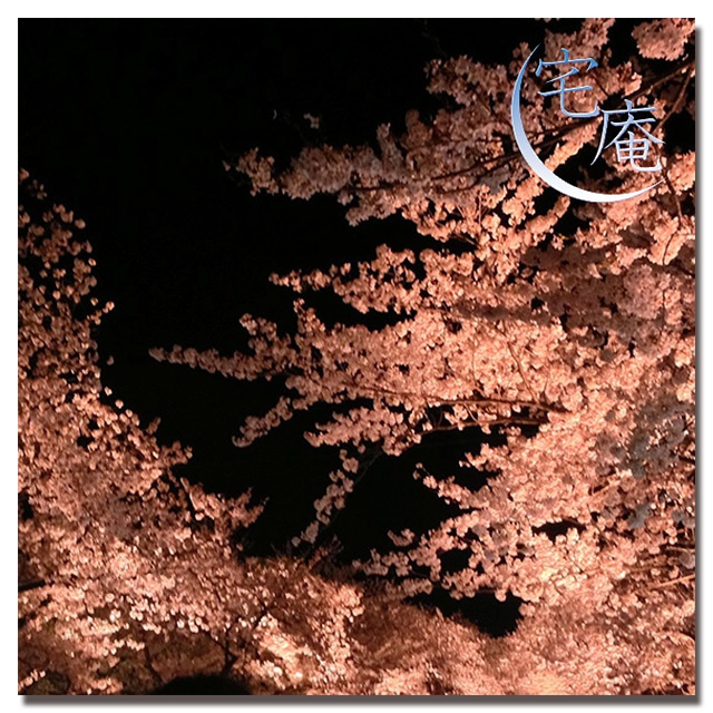 千本桜 ーString quartet Versionー