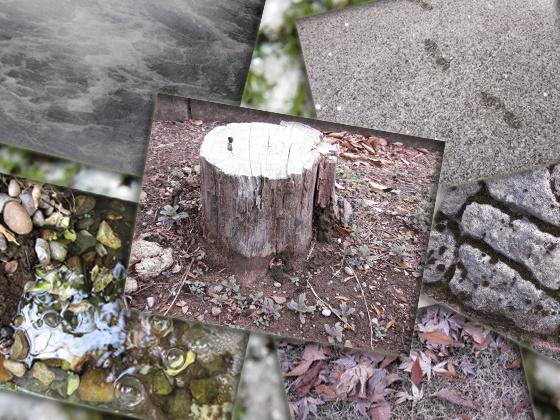 秋冬石緑川などその他 写真素材