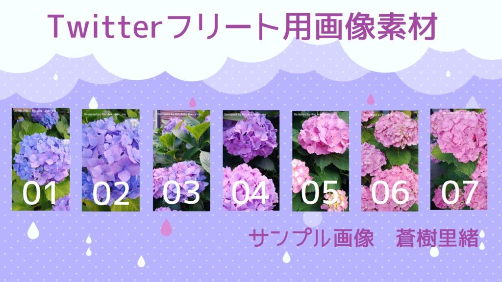【#フリー素材】紫陽花【Instagram向け】