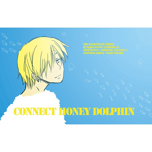 CONNECT HONEY DOLPHIN