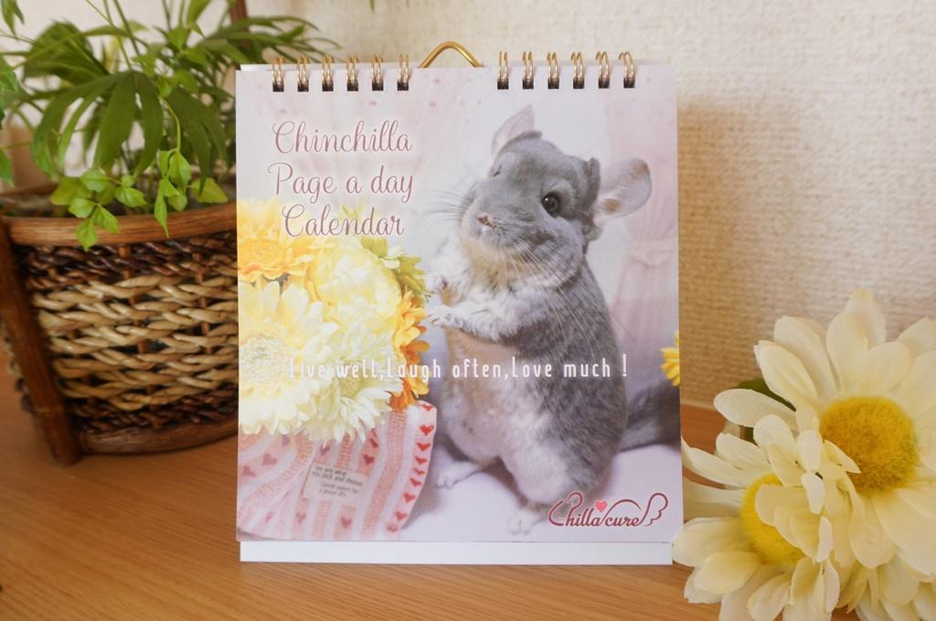 チンチラ日めくりカレンダー【No.1】