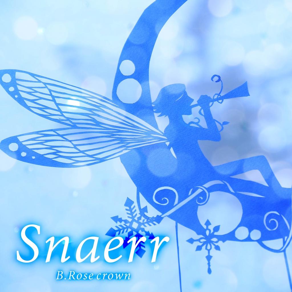 Snaerr