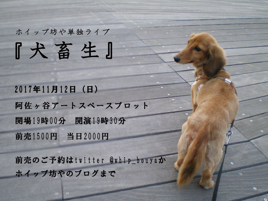 ホイップ坊や第一回単独ライブ『犬畜生』DVD