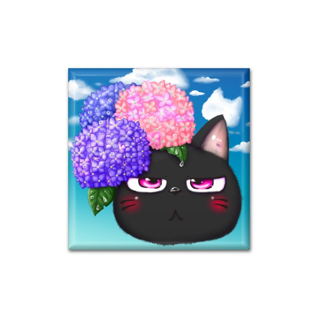 黒猫兄弟~弟と紫陽花~