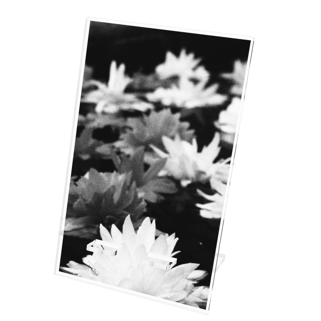 【アクリルスマホスタンド】Monochrome Flower