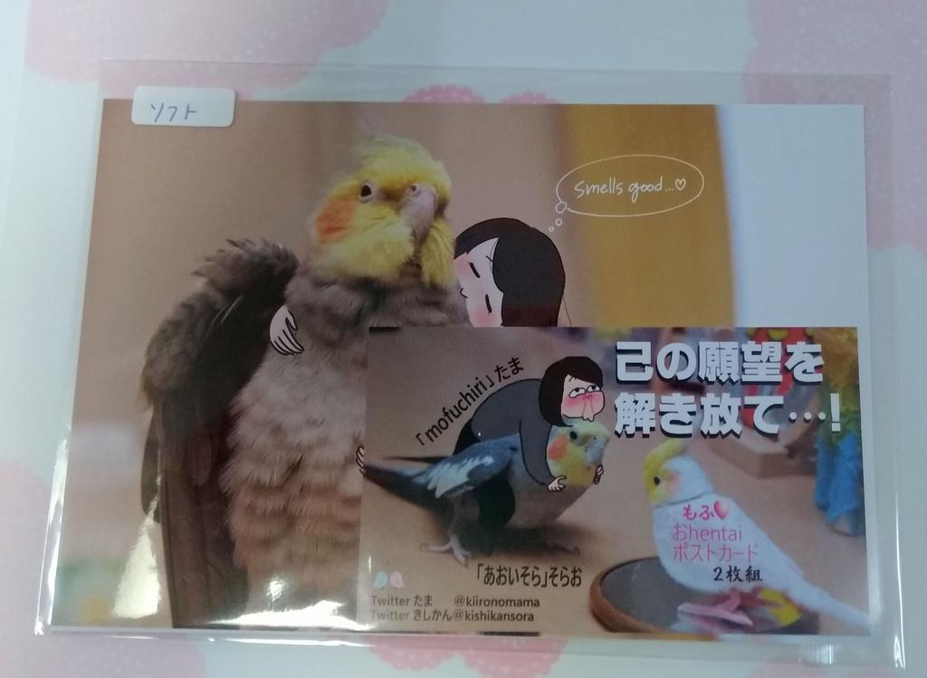 ポストカード(2枚組:ソフト)