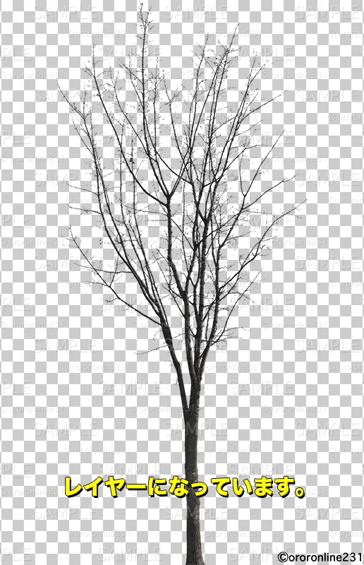 木の素材_No,05